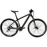 BEIOU Carbon MTB 29er Bicicleta de montaña Hardtail 29Pulgadas...